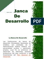 49412896 La Banca de Desarrollo