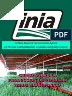 curso-produccion-forraje-verde-hidroponico.pdf