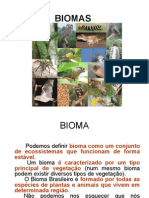 Os+Biomas+Brasileiros