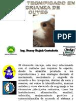 Manejo de cuyes (1).ppt