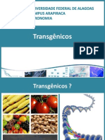 Aula 8 - Transgenicos - Parte 1