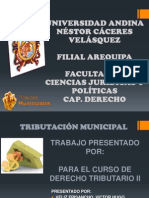 Tributacion Municipal 1