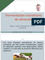 1. Fermentación microbiana de alimentos