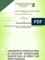 LINEAMIENTOS GENERALES PARA LA EDUCACIÓN INTERCULTURAL BILINGÜE