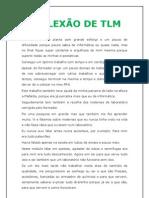 REFLEXÃO DE TLM