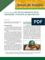 CEDA_analisis_Nº27_noviembre_2012_evolucion_jurisprudencial_DDNN