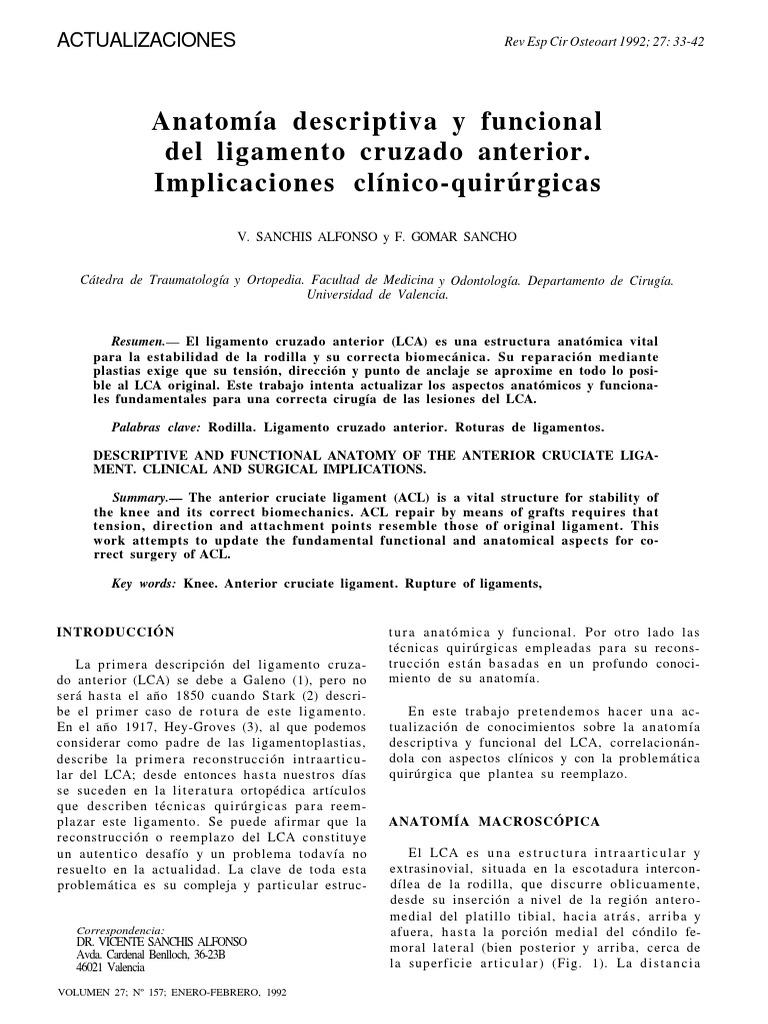 Lca Anatomia Descriptiva y Funcional