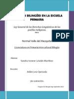 ley general de los derechos ling.docx