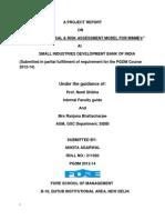 CREDIT APPRAISAL & RISK ASSESSMENT MODEL FOR MSME's