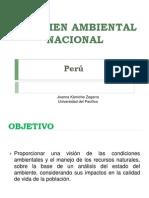 2- Resumen Ambiental Nacional v4 Estado y Respuestas- 19-1-11