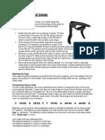 capo usage.pdf