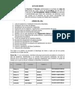 Acta Fonaes Grupo Peralta