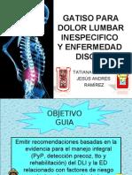 Dolor Lumbar Inespecifico y Enfermedad Discal