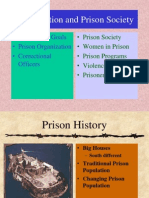 Incarceration and Prison Society