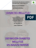 Diabetes Mellitus Adulto Mayor