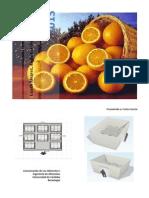 Diseño de Refrigeración_Naranjas