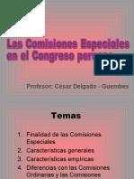CDG - Comisiones parlamentarias Especiales (PERU)