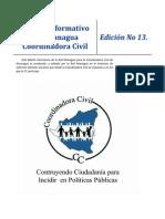Boletín Informativo 13