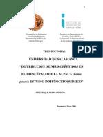 DBCP Medina Medina LE Distribucion de Neuropeptidos