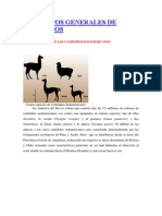 ASPECTOS GENERALES DE CAMELIDOS.docx