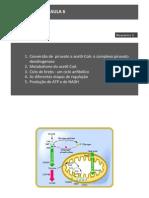 AULA061314.pdf