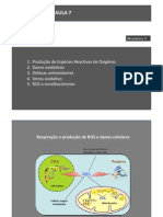 AULA071314.pdf