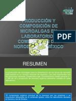 PRODUCCIÓN Y COMPOSICIÓN DE MICROALGAS EN LABORATORIOS