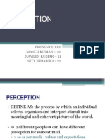 Perception Presentation