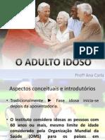 idoso 2013