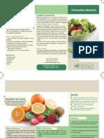Alimentação - Estudos de Saúde