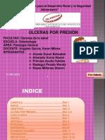 Patologia Ulceras Por Presion