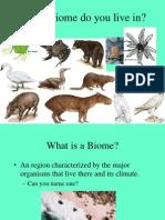 Environment (upscpdf.com).pdf   Rainforest   Ecosystem