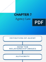 Chapter 7 Agency Law Slides