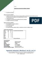 Resumen Caracteristica Silicato de Aluminio Eurogrit