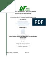 01 Formato Protocolo Reporte Final Estadía