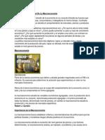 macroeconomia-121206181424-phpapp01 (1).docx