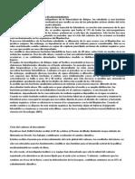 Absorción del carbono por medio de microorganismos.docx