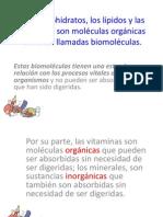 biomoleculas curso