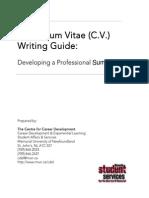 CV_Guide_2010