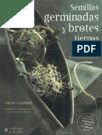 Plantas - Semillas Germinadas y Brotes Tiernos