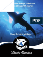 ◄ GUIDELINES ON HOW TO BEHAVE WHEN DIVING WITH SHARKS ►