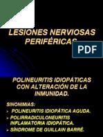 Lesiones Nerviosas Perifericas