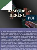 Bases de La Herencia(2)