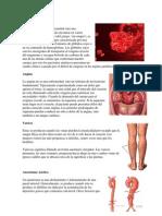 Anemia.docx
