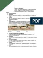 Manual Del Conductor 4-6 - Scainet