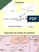 Colesterol e Lipoproteinas Figuras