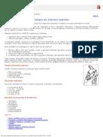 Particularitatile Anatomo Fiziologice Ale Sistemului Respirator