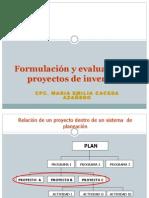 FormulacionEvaluacionDeProyectos