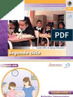 Fichas Para Trabajar La Lecto-escritura Segundo Ciclo