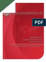Diversity Management Inclusion Companybrochure Fnl2013